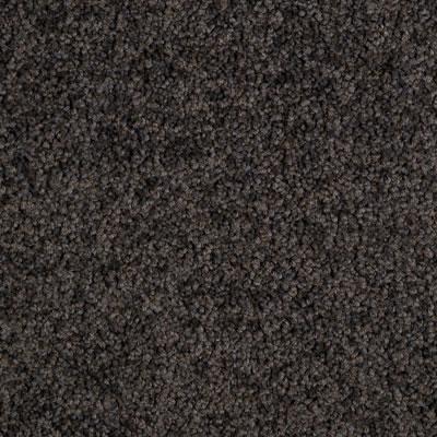 Miami Beach Virginia Key Carpets Solomons Flooring
