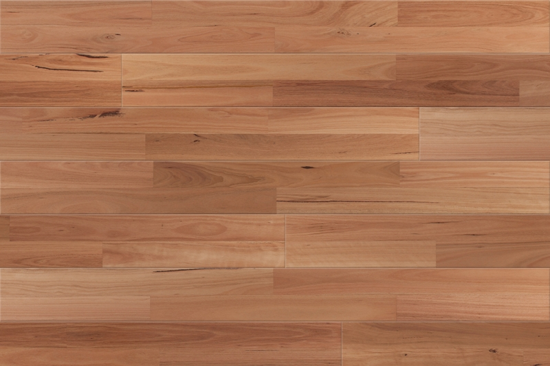 Outback Blackbutt Timber Flooring Solomons Flooring